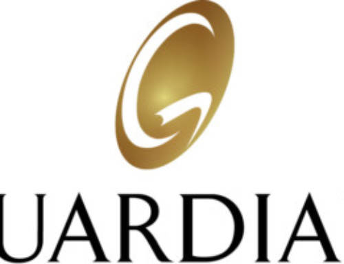 Guardian Life Insurance: The 2015 Guardian Workplace Benefits Study