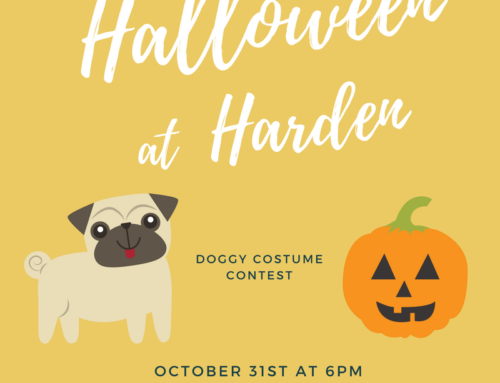 Halloween at Harden on October 31, 2017 at 6:00PM